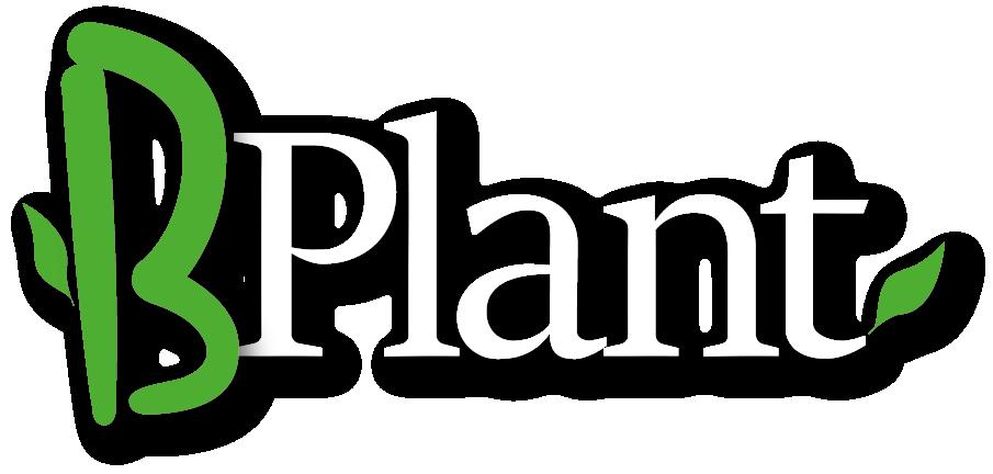 B-Plant - bamboe & grassen